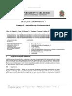 Informe de Consolidación Unidimensional