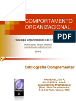 110105-Aula Comportamento Organizacional