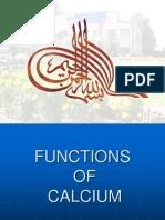 fungsi kalsium