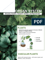 CO4 1 Plants