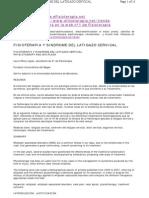 Fisioterapia y Sindrome Del Latigazo Cervical