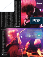 2011_Guitar_eu.pdf