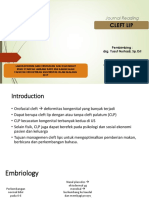 ppt cleft lip