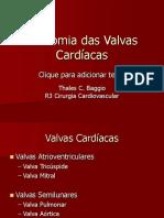 Anatomia Das Valvas Cardíacas