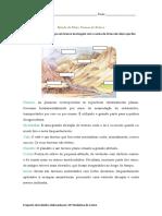 fichaformasderelevo-100707160623-phpapp01