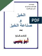 52617006.pdf
