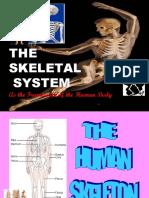 6. FRAMEWORK OF THE BODY.ppt