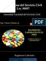 Implementaci n de La Ley Servir