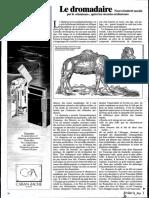 Le dromadaire - nouvel intérêt suscité par le chameau, après les récentes sécheresses.pdf