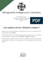 Unidad 6 Bilingüismo Indígena en Colombia - Paula Ríos