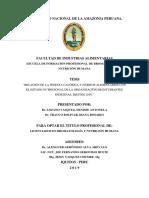 Denisse_tesis_titulo_2019.pdf
