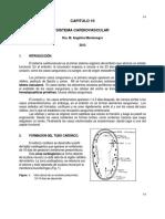Capítulo 10 - Desarrollo del sistema cardiovascular