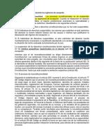 2. Monografia Constitucion