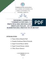Memoria Ambiental Terminación Del Canal Principal Del Sistema de Riego y Drenaje Pasaje 3 (2)