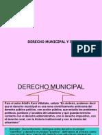 derecho municipalidad