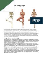 Anatomia del yoga 01.odt