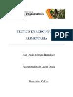 Informe Pasteurización