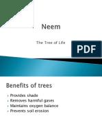 Neem Presentation