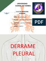 DERRAME PLEURAL - Cherlin Sandoval.pptx · Versión 1