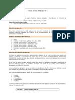 practica N°1..pdf