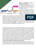 ARTICULO-PARTE-2.docx