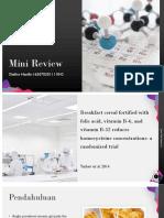 Mini Review.pptx