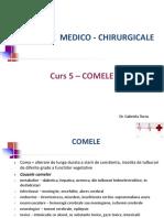 C5_-_Comele