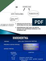 1 MIKROMERITIKA_12.pptx