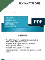 dokumen.tips_ppt-penyakit-tropis-kelompok-1 (1)