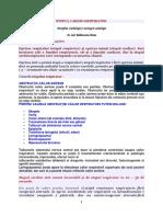 IMPORTANT-DE-REŢINUT-SCR.docx