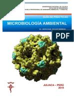 Prácticas Microbiología ambiental - Rojas