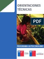 ORIENTACIONES TECNICAS _PROGRAMA AUTOCONSUMO.pdf