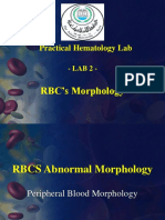 3-Red-Blood-Cells-Morphology.ppt.pptx