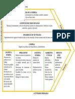 Cadena de Valor de La Empresa Ópticas Amazonas
