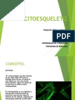 CITOESQUELETO Biologia Celular Alejo