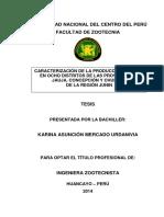 CARACTERIZACIÓN DE LA PRODUCCIÓN APÍCOLA  EN JUNIN