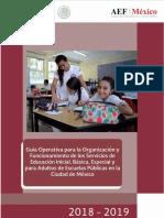 Guia Operativa 2019