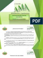 Presentación para empresas de TAMA