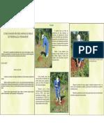 COMO PLANTAR ÁRVORES NATIVAS EM ÁREAS DE PRESERVAÇÃO PERMANENTE.pdf