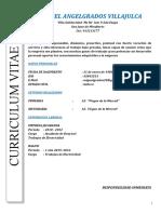 Modelo cv 1