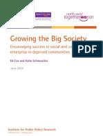 Growing the Big Society