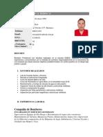 CV Erick Berrocal