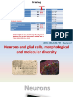 neurophysiol_02_NeuronsGlia.pptx