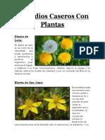 Plantas medicinales de historia