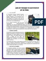 ANIMALES EN PELIGRO TE EXTINCION EN EL PERU