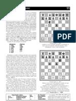 Manual Bsico de Xadrez