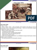 15 - Baixa Idade Média.pdf