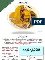 LIPIDOS-1 (3)