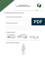 Examen 1 Anatomia