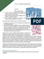 Histología Tejido Epitelial